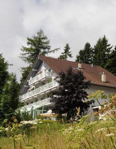 Südseite des Frauenhotels Revital mit weissen Balkonen. Davor ist eine Wildblumenwiese und dahinter stehen grosse Bäume.