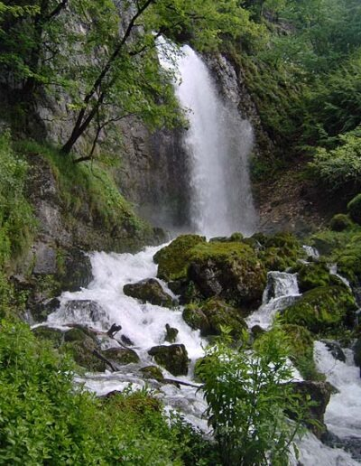 Zwischen Felsen und Steinen ist ein Wasserfall. Die Steine sind grösstenteils grün Überwachsen. Am Rand sind Bäume.