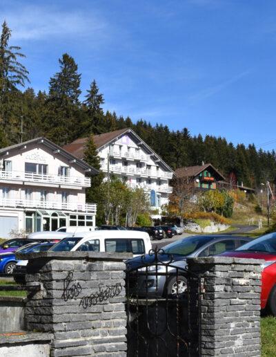 Vor dem Tannenwald stehen die zwei Häuse vom Hotel Revital. Zum Eingang führt eine Strasse hinauf. Am Rand sind Parkplätze mit Autos.
